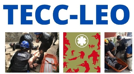 Próximo curso TECC-LEO